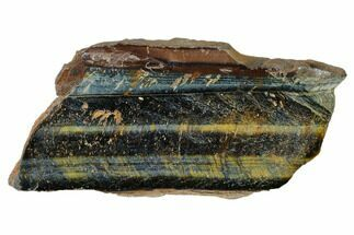 "Buy 4.2"" Polished Tiger's Eye Section - South Africa - #148276"