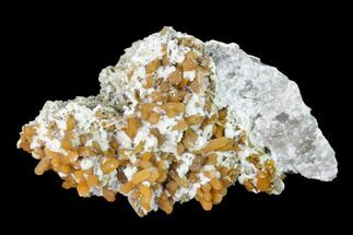 "Buy 3.3"" Orange Stilbite, Clinozoisite and Calcite Association - Poland - #148417"