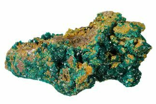 "Buy 3.9"" Gemmy Dioptase Clusters with Mimetite - N'tola Mine, Congo - #148465"