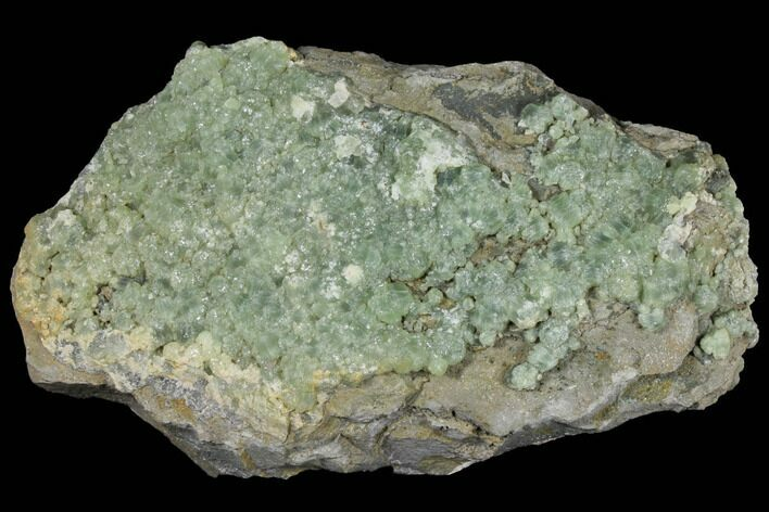 "13.3"" Green Prehnite Crystal Cluster on Rock - Morocco"