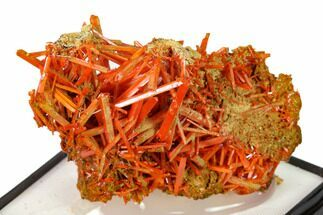 Crocoite - Fossils For Sale - #148500