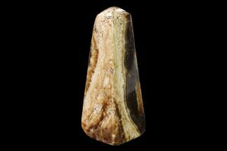Calcite - Fossils For Sale - #149478
