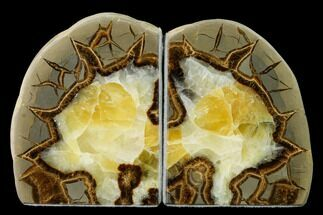 "4.3"" Calcite Filled Septarian Bookends - Utah For Sale, #149921"
