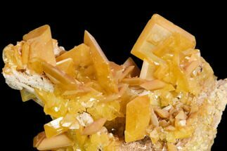 "Buy 1.9"" Wulfenite Crystal Cluster - La Morita Mine, Mexico - #149983"