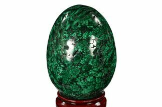 "Stunning, 3.9"" Polished Malachite Egg - Congo For Sale, #150314"