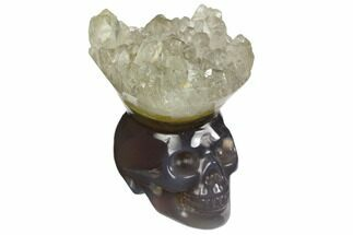 "Buy 2"" Polished Agate Skull with Quartz Crown  - #149539"