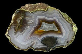 Chalcedony var. Agate - Fossils For Sale - #150504