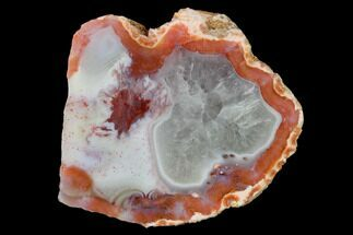 Chalcedony var. Agate - Fossils For Sale - #150558