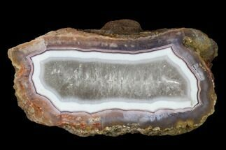 "Buy 4.2"" Polished Banded Agate Nodule Half  - #150571"