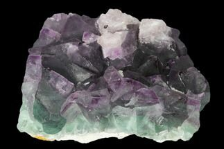 "2.8"" Purple-Green Octahedral Fluorite Crystal Cluster - Fluorescent! For Sale, #149663"