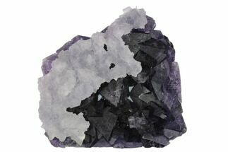 "3.3"" Fluorite Over Purple Octahedral Fluorite - Fluorescent! For Sale, #149684"