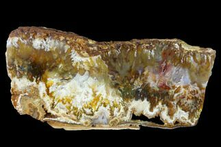 Chalcedony var. Agate - Fossils For Sale - #152634