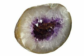 "4.8""  Amethyst Geode - Uruguay For Sale, #151238"