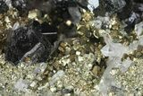 "2.2"" Sphalerite, Pyrite and Quartz Association - Peru - #149713-1"