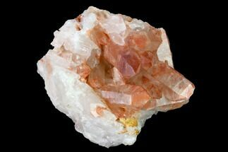 "2.4"" Natural Red Quartz Crystal Cluster - Morocco For Sale, #153764"