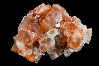 "Buy 2"" Aragonite Twinned Crystal Cluster - Morocco - #153796"