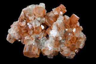 Aragonite - Fossils For Sale - #153804