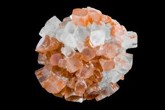 Aragonite - Fossils For Sale - #153852