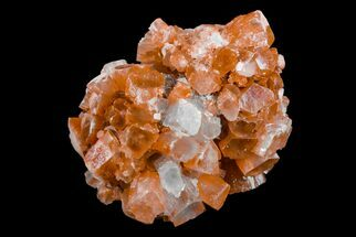 Aragonite - Fossils For Sale - #153858