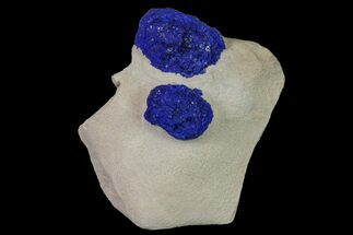 Azurite - Fossils For Sale - #155643