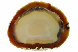 "Buy 6.1"" Polished Brazilian Agate Slice - #156310"