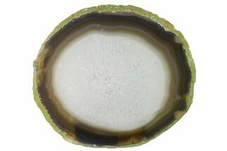 "6.2"" Polished Brazilian Agate Slice For Sale, #156005"