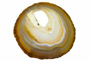 "5.5"" Polished Brazilian Agate Slice For Sale, #156008"