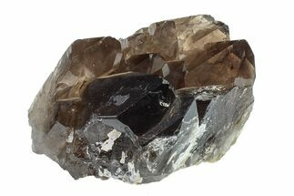 "3.6"" Dark Smoky Quartz Crystal Cluster - Brazil For Sale, #154838"