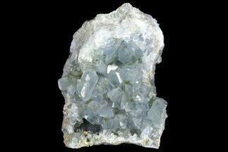 Celestine (Celestite) - Fossils For Sale - #156498