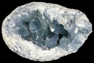 "Buy 9.1"" Sky Blue Celestine (Celestite) Geode - (Large Crystals) - #156502"