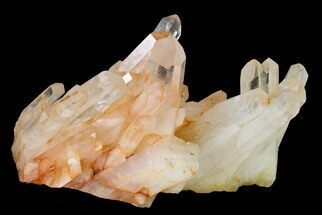 "7.8"" Tangerine Quartz Crystal Cluster - Madagascar For Sale, #156920"