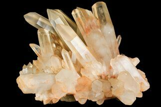 "10.4"" Tangerine Quartz Crystal Cluster - Madagascar For Sale, #156956"