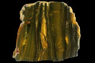 "8.8"" Polished ""Packsaddle"" Tiger Eye Slab - Western Australia For Sale, #158174"