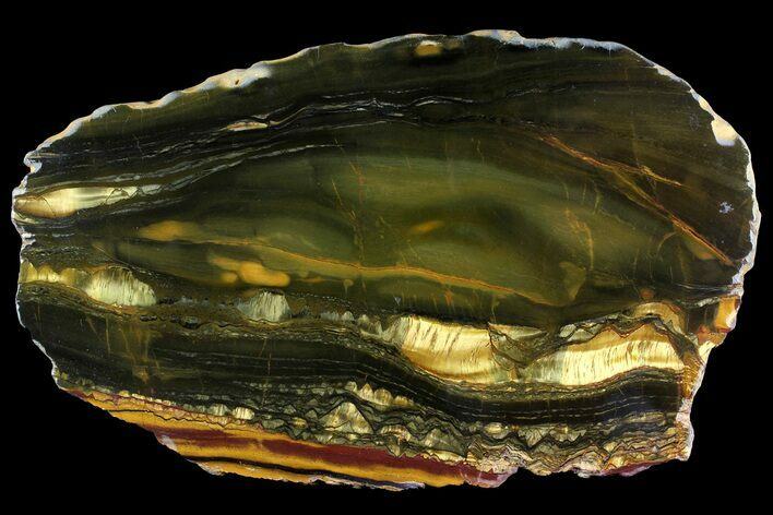 "11.7"" Polished ""Packsaddle"" Tiger Eye Slab - Western Australia"
