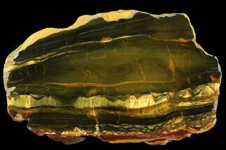 Tiger's Eye - Fossils For Sale - #158163