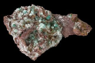 Rosasite, Malachite, Selenite & Dolomite - Fossils For Sale - #159456