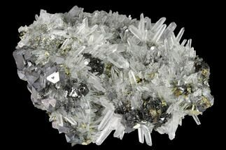 "3.3"" Sphalerite, Pyrite, Galena and Quartz Association - Peru For Sale, #160145"