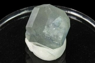 "Buy .7"" Green Cuboctahedral Fluorite Crystal on Sparkling Quartz - China - #161776"