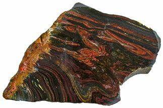 "Buy 7.3"" Polished Tiger Iron ""Stromatolite"" Slab - 3.02 Billion Years - #162004"