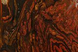 "10.6"" Polished Tiger Iron ""Stromatolite"" Slab - 3.02 Billion Years - #161891-1"