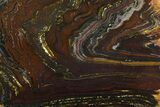 "12.3"" Polished Tiger Iron ""Stromatolite"" Slab - 3.02 Billion Years - #163111-1"