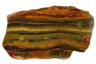 "Buy 9.4"" Marra Mamba Tiger's Eye Slab - Mt. Brockman (2.7 Billion Years) - #163126"