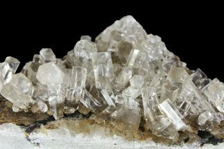 Calcite - Fossils For Sale - #164001