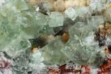 "4.8"" Green Cubic Fluorite Crystal Cluster on Quartz - Morocco - #164557-2"