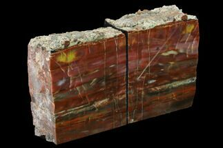 "Buy 5"" Tall, Arizona Petrified Wood Bookends - Red, Yellow & Purple - #166075"