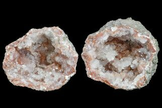 "Buy 1.3"" Keokuk ""Red Rind"" Geode - Iowa - #165748"