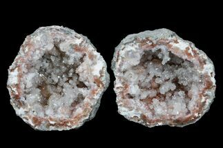 "Buy 1.4"" Keokuk ""Red Rind"" Geode - Iowa - #165751"