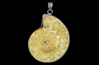 "Buy 1.45"" Fossil Ammonite Pendant - 110 Million Years Old - #166129"