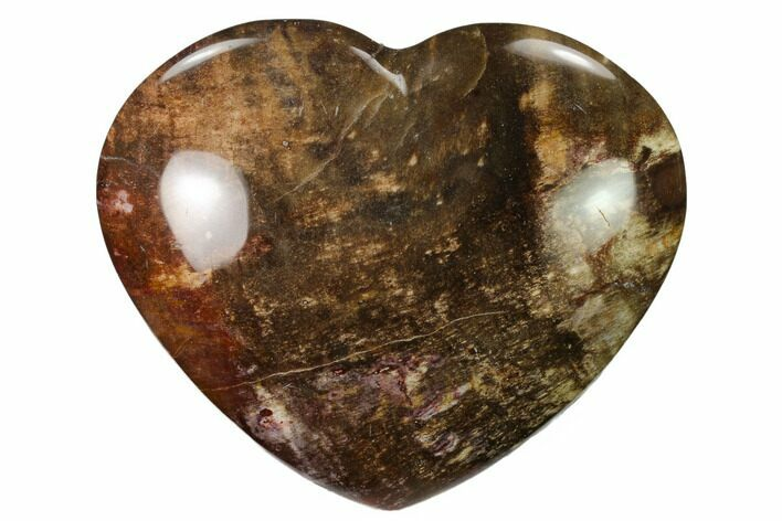 "4.5"" Polished Triassic Petrified Wood Heart - Madagascar"