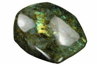 "Buy 4"" Flashy, Polished Labradorite Free Form - Madagascar - #167104"
